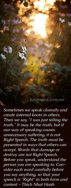 """Sometimes we speak clumsily and create internal knots in others. Then we say, """"I was just telling the truth."""" It may be the truth, but if our way of speaking causes unnecessary suffering, it is not Right Speech. The truth must be presented in ways that ot"""
