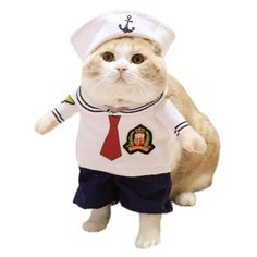 NACOCO Dog Sailor Costumes Navy Suit with Hat Halloween Christmas Pet Costumes for Puppy and Cat (M) Halloween Pets Costumes Dogs Pet Costumes For Dogs, Pet Halloween Costumes, Halloween Snacks, Halloween Cupcakes, Cat Costumes, Diy Halloween, Vintage Halloween, Halloween Christmas, Costume Ideas