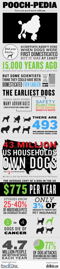 """""""Pooch-pedia: Facts Your Pooch Never Told You""""  Type dominant infographic. Like their use of color to pull out important info. Very well done and clear hierarchy. Nice use of lines as well."""