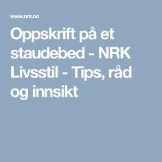 Oppskrift på et staudebed - NRK Livsstil - Tips, råd og innsikt