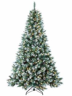 7' Pre-Lit Frosted Mountain Pine Artificial Christmas Tree - Clear Lights