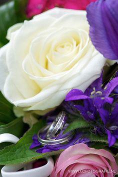 #ringen #boeket #rozen #witgoud #wit #paars #roze #diamantjes #rings #bouquet #roses #whitegold #white #purple #pink #diamonds