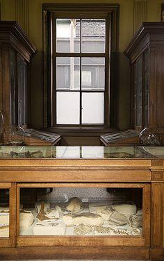 /\ /\ . Teylers Museum, Haarlem