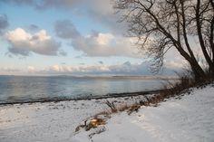 Winter at the Schlei....  http://www.ferienhaus-dat-smuke-swedenhuus.de/