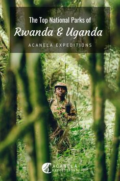 Africa is known for its wildlife safaris, breathtaking animal sightings and unique culture, and the Ugandan and Rwandan National Parks blend in all of these elements making the trip to Africa worth it. Uganda and Rwanda are side-by-side countries located in the heart of Africa. These memorable national parks are all within a few hours drive of each other and will make your time spent in these countries unforgettable as you walk side-by-side with gorillas and explore the dense forests.