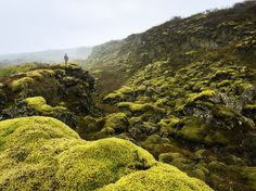"""A hiker scans the unique geology of Thingvellir National Park in Iceland. The area, whose name means """"parliamentary plains,"""" is a protected national treasure; the parliamentary open-air assembly of Iceland first convened there in A.D. 930."""