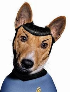 cane star trek - Yahoo Image Search Results
