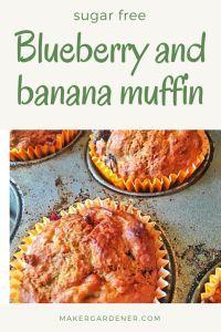 blueberry and banana muffin. sugar free as using natural sugars from the fruits. #sugarfreemuffin #blueberrybananamuffin #makergardener