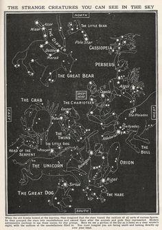 star constellations - vintage map