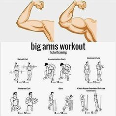 Mens Style Discover Workout routine health big arm workout gym workouts и fitness. Fitness Workouts Gym Workout Tips Weight Training Workouts Fun Workouts Fitness Tips Workout Plans Kids Workout Fitness Motivation Workout Schedule Big Arm Workout, Gym Workout Chart, Gym Workout Tips, Biceps Workout, Workout Plans, Kids Workout, Workout Schedule, Street Workout, Fitness Workouts
