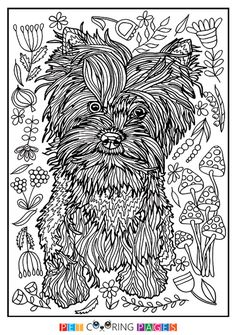 Free printable Yorkshire Terrier coloring page available for download. Simple and detailed versions for adults and kids.