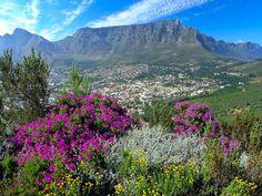 #Muttertag #Geschenk #Gartenreisen #Südafrika www.biogaertner.at/der-biogaertner/gartenreisen