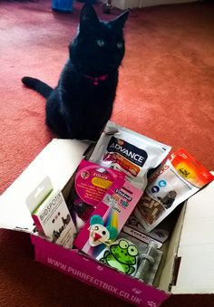 Beauty, Miscellany: Purrfectbox April 2015 Review