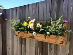 Pallet Patio Planter for Wall | Pallet Furniture
