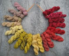 rainbow of natural dyes