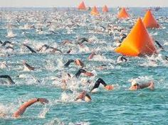 Many people who are bitten by the Ironman bug find the open water swim their biggest obstacle and want to know the best way to survive the Ironman Triathlon swim. Triathlon Motivation, Triathlon Gear, Ironman Triathlon, Triathlon Training, Triathlon Swimming, Marathon Training, Open Water Swimming, Swimming Tips, Half Ironman Training