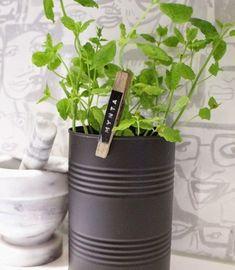 Pelle et Fleurs en Pot Cocorn Lot de 3 Mini Outils de Jardinage cr/éatifs 3 pi/èces Mini Outils de Jardin Petite Pelle r/âteau