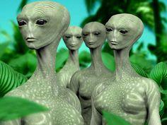 Image about aliens in ♥ by maria victoria on We Heart It Alien Gris, Grey Alien, Hd Wallpapers 1080p, 1080p Wallpaper, Wallpaper Backgrounds, Concept Art Alien, Nordic Aliens, Space Aliens, Aliens And Ufos