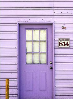 p u r p l e b e l am a z a - Lila Violet Aesthetic, Lavender Aesthetic, Aesthetic Colors, Aesthetic Collage, Purple Rooms, Purple Themes, Purple Walls, Photo Wall Collage, Picture Wall
