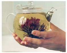 """mora-torium: """" Flowering tea or blooming tea consist each of a bundle of dried tea leaves wrapped around one or more dried flowers. These are made by binding tea leaves and flowers together into a. Flower Tea, My Cup Of Tea, Blooming Flowers, Dried Flowers, Tea Recipes, High Tea, Afternoon Tea, Tea Time, Tea Party"""