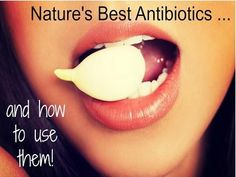 The 11 Best Natural Antibiotics and How to Use Them http://www.thehealthyhomeeconomist.com/how-to-use-best-natural-antibiotics/