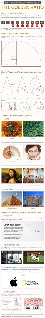 Photo: How to Use the Golden Ratio to Create Gorgeous Graphic Designs  Want to be on the same creative level as Leonardo Da Vinci, Salvador Dali and the designers of the Parthenon? They all have one simple design concept in common.  http://www.companyfolders.com/blog/golden-ratio-design-examples  #graphicdesign   #design   #composition   #art   #designtip   #illustrator   #adobe   #photoshop   #graphicdesigner   #infographic   #visual   #visualcontent   #tutorial