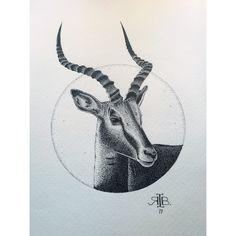 a n t e l o p e. #dots #stippling #pointillism #antelope #drawing #illustration #ink #blackink #rotring #pen #pencil #art #artwork #animal #ribart