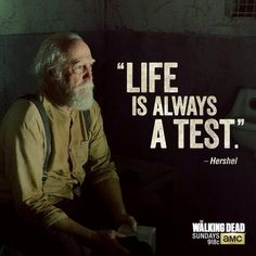 20 Times Teaching Is Exactly Like The Walking Dead Hershel Greene ~ The Walking Dead The Walk Dead, The Walking Dead 2, Walking Dead Zombies, Tatuaje The Walking Dead, The Walking Dead Tattoos, Walking Dead Quotes, Scott Wilson, Dead Man, Daryl Dixon