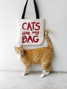 Cats are my bag, how about you? This is my newest design, hand-lettered and screen printed in my Philadelphia studio. This is a 100% cotton canvas tote bag , made in the USA and printed by me! Help th
