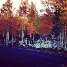 ~ Mirror Lake Scenic Byway ~ Utah....