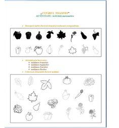 fise matematica dificultate ridicata 5-7 ani   Cu Alex la gradinita Worksheets For Kids, Kindergarten Worksheets, Math For Kids, Crafts For Kids, Nursery Activities, Math Lessons, Books, Kids Math, Crafts For Children