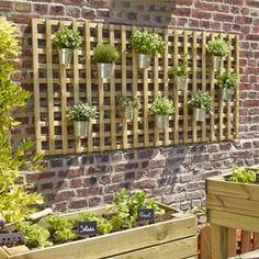 110 Best Pleasure Of Garden Images Garden Outdoor Backyard