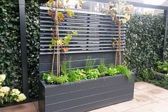 Ideale verrijdbare kruidenbak Bamboo Containers, Interior Garden, Shabby Chic Decor, Container Gardening, Pop Up, Outdoor Gardens, Fence, Home And Garden, Backyard