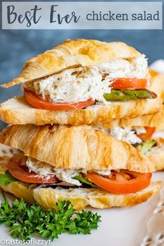 Use leftover shredded chicken in this easy chicken salad recipe flavored with parmesan cheese, dill weed, parsley, onion and garlic. Dont forget that touch of curry powder for the best chicken salad sandwich ever. Best Chicken Salad Recipe, New Chicken Recipes, Chicken Sandwich Recipes, Salad Chicken, Bbq Chicken, Chicken Salad Sandwiches, Shredded Chicken Salads, Shredded Chicken Sandwiches, Best Sandwich Recipes