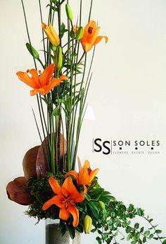 Lirios Naranja/Orange Lilies