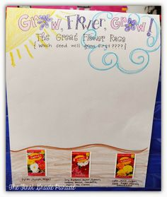 Plant Unit Seed Graph for Kindergarten & First Grade Science/Math Activity. Predict which seed will grow first and graph results! Kindergarten Science Activities, Spring Activities, Teaching Science, Classroom Activities, Teaching Ideas, Classroom Ideas, Elementary Science, Preschool Ideas, Life Science