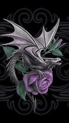Dragon Tattoo is one of the most popular mystical tattoos. Like most other mythological tattoos, dragon tattoos are perceived in different ways by different cultures around the world. Celtic Dragon Tattoos, Chinese Dragon Tattoos, Dragon Tattoo Designs, Anne Stokes, Celtic Fantasy Art, Fantasy Dragon, Celtic Art, Beautiful Dragon, Beautiful Fantasy Art