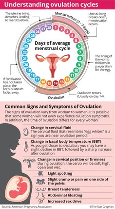 Getting Pregnant Tips, Trying To Get Pregnant, Pregnancy Workout, Pregnancy Tips, Health Facts, Health Tips, Female Reproductive System Anatomy, Female Hygiene, Nursing Mnemonics