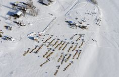 Dog teams rest at the village of Nikolai along the Kuskokwim River in Alaska during the race on March 5.