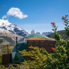 Up for a #Easter in a cosy Suite Dome! #Travel #Patagonia #Flowers #WelcomeAutumn
