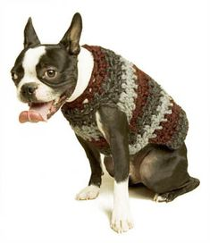 Free Crochet Pattern 60541 Striped Dog Sweater : Lion Brand Yarn ...