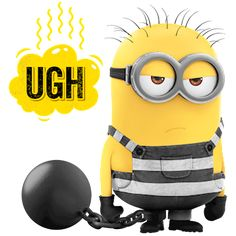 Minion Rock, Cute Minions, Minions Despicable Me, Funny Minion Pictures, Funny Images, Funny Photos, Funny Fails, Funny Jokes, Hilarious