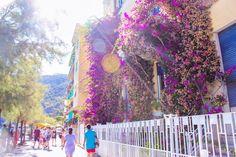 지중해를 품은 친퀘테레 Landscape Pictures, Fair Grounds, Travel, Scenery Paintings, Viajes, Landscape Photos, Destinations, Traveling, Trips