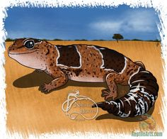 Fat Tailed Gecko Daily Creature Print by NadilynBeatosArt on Etsy, $10.00
