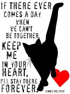 Gato impresión arte gato gato Memorial impresión por GoingPlaces2