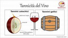 Sauvignon Blanc, Cabernet Sauvignon, Italian Wine, Wine And Beer, Pinot Noir, Wine Cellar, Wine Tasting, Wine Glass, Alcoholic Drinks
