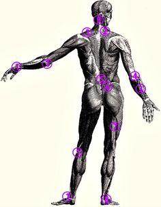 Gel Antiinflamator cu Efect Imediat • Perskindol Sciatica, Metabolism