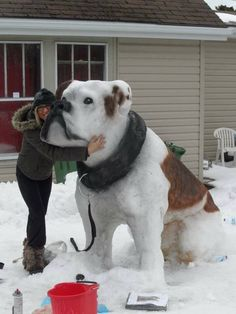 Funny pictures about Impressive Snow Sculpture. Oh, and cool pics about Impressive Snow Sculpture. Also, Impressive Snow Sculpture photos. Diy Pour Chien, Ice Art, Snow Sculptures, Dog Sculpture, Ceramic Sculptures, Snow Art, Snow Dogs, Arte Disney, Winter Fun