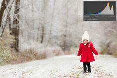 camera histogram tips