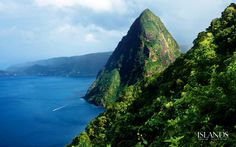 St Lucia. View of Petite Piton from halfway up Gros Piton, which we hiked on our honeymoon.